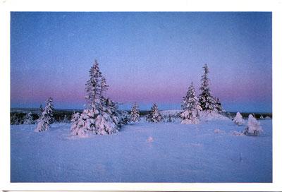 Postcard from Juha